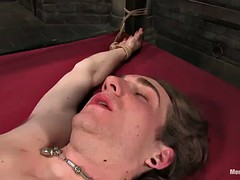dominant girl fucks guy's ass with strapon and toy before face sitting him