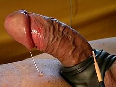 Divertido, Gay, Hd, Masturbación, Juguetes