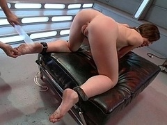 Pegged down in doggy style