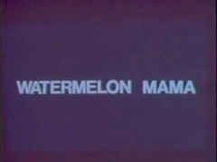Classic Vintage Retro - Diamondclip - Watermelon Mam